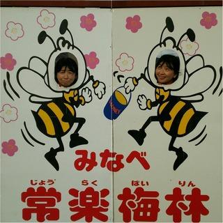 Fotor_148652116551217-001.jpg