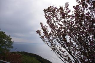 日ノ岬から紀伊水道を望む.JPG