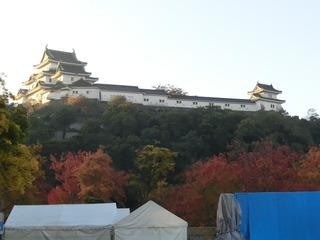 朝日と紅葉に輝く和歌山城