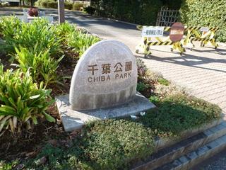 千葉公園 石標
